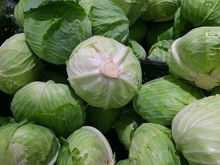cabbage-1666765__340-1.jpg